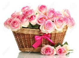 beautiful bouquet of flowers beautiful bouquet of pink roses in basket isolated on white stock