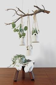 Modern Hanging Planters Hanging Plants Indoors House Plant Club U2022 Instagram Photos