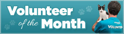 of the month volunteer of the month san diego humane society