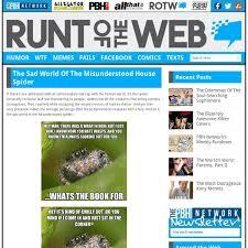 Spider Meme Misunderstood Spider Meme - the misunderstood house spider pearltrees