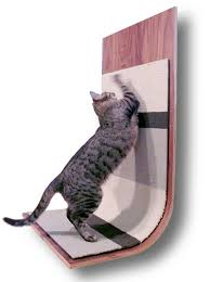 best picture of modern cat scratcher all can download all guide