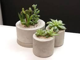 Concrete Planters Mini Concrete Planters Using Plastic Bottles 6 Steps With Pictures