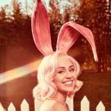 Miley Cyrus Turkey Meme - miley ray cyrus mileycyrus twitter