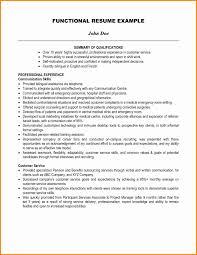 professional summary resume summary of resume exle fungram co