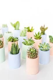 diy planters 29 diy succulent planter ideas creative ways to display succulents