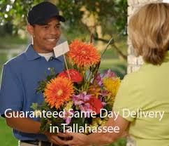 Tallahassee Flower Shops - tallahassee florist u003e welcome