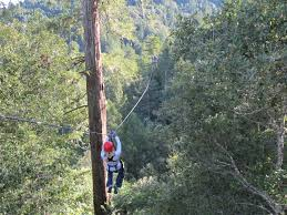 Sonoma Canopy by Spot For Bryan Kristin Grayson And Landon Sonoma Canopy Tour