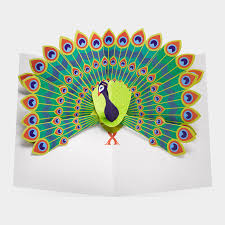 pop up peacock greeting card