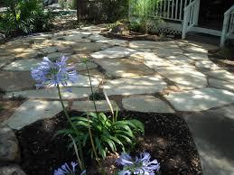austin texas native plants austin native landscaping u2014 home landscapings top landscape