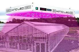 commercial led grow lights led grow lights the right led greenhouse lighting commercial