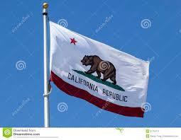 California Republic Flag California Republic State Flag Stock Illustration Illustration
