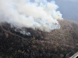 National Wildfire Activity by After The Wildfires Mitigating Climate Change And Adapting To The