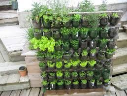 Patio Vegetable Garden Ideas Patio Vegetable Garden Ideas Home Design Ideas