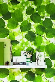 40 best walk in the woods images on pinterest wallpaper designs