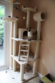 Unique Cat Furniture Best 20 Cat Tower Plans Ideas On Pinterest Cat Trees Diy Easy