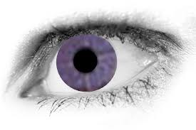purple eye color what are the rarest eye colors in the world