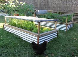 unusual raised bed garden raised garden beds support plants