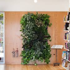 Vertical Wall Garden Plants by Livingroom Wall Mounted Plant Holder Metal Wall Planters