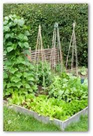vegetable garden design ideas small gardens decorating clear