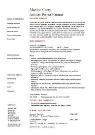 It Project Manager Resume Template Project Manager Resume Example Resume Example And Free Resume Maker