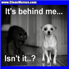 Best Memes 2014 - it s behind me clean memes the best the most online