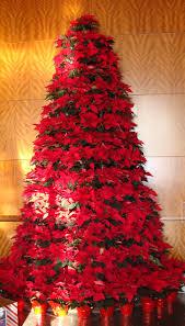 Poinsettia Christmas Tree Skirt Live Poinsettia Christmas Tree It U0027s Christmas Time Pinterest