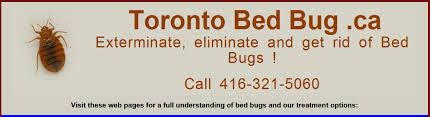 How To Get Rid Of Bed Bugs At Home How To Get Rid Of Bed Bugs Pest Control Canada