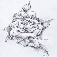 drawings image result for on paper