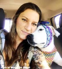 headbands for one eared former bait dog sent dozens of headbands for christmas