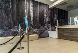 mural installations mark lilly photography the