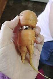 carrot ring found 1 carrot diamond ring the two way npr