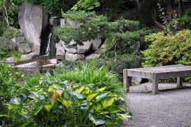 japanese garden plants ideas for your home margarite gardens