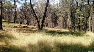 anyone in nevada county looking to build an affordable cabin sized 1 davos court applegate ca nevada county real estate specialist