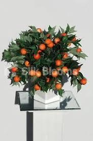 contemporary mini orange tree artificial cube vase table display