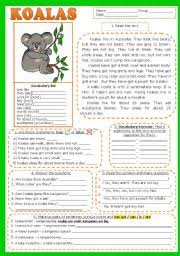 english worksheet koalas reading comprehension fully editable