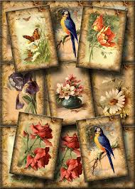 Flowers For Birds And Butterflies - flowers birds butterflies charming vintage art hang gift