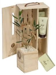 olive gifts beautifully boxed tree gift fruiting flowering and nz