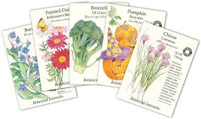 seed packets winter garden guide dos and don 39 ts for seed starting