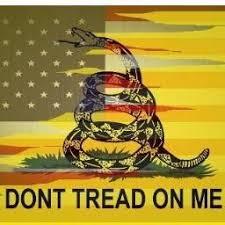 Don T Tread On Me Tattoo Ideas 22 Best Tattoos Images On Pinterest American Flag Tattoos
