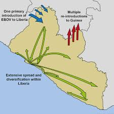 Liberia Africa Map by Genomic Analysis Sheds Light On Ebola Outbreak In Liberia