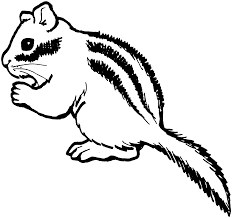 chipmunk coloring pages getcoloringpages com