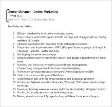Expert Resume Seo Resume Templets U2013 6 Free Samples Examples Format