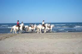 chambre d hote andalousie réservation randonnée cheval chambre d hôtes andalousie espagne