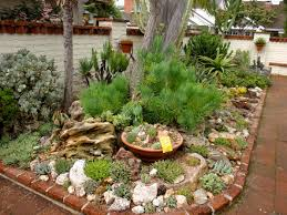 rock and succulent garden archives succulent gardening