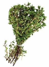 herb harvesting thyme and how to dry thyme