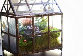 diy big terrarium diy terrarium