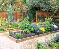 skillful ideas veggie garden design top 25 about vegetable garden