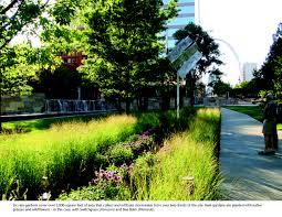 native plants for rain gardens asla 2011 professional awards citygarden