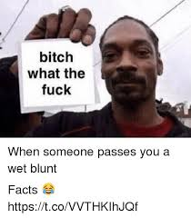 Fuck Bitches Meme - bitch what the fuck when someone passes you a wet blunt facts