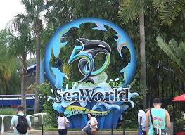 Sea World Orlando Map by Full Tour Of Seaworld Orlando Florida In 50 Minutes Youtube